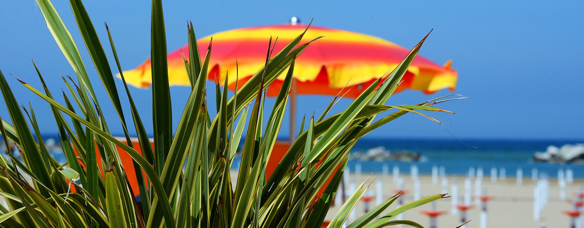 Vacanze ai Bagni Beach 96 Augusto e Stefano | Bagnini di Cattolica